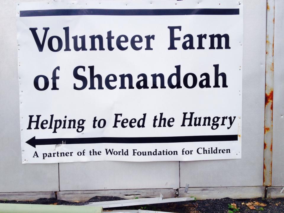 10.23.13-2-Volunteer-Farm
